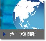 グローバル開発